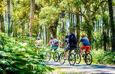 Les randonnées à vélo